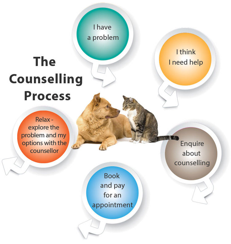 individual marriage relationship counselling process diagram